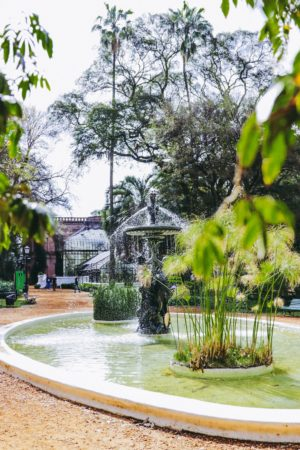 A Perfect Day In Palermo, Buenos Aires - Botanical Gardens, Palermo - thecasualfree.com
