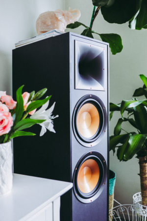 Klipsch R-820F Speaker System - Home Audio Setup - thecasualfree.com