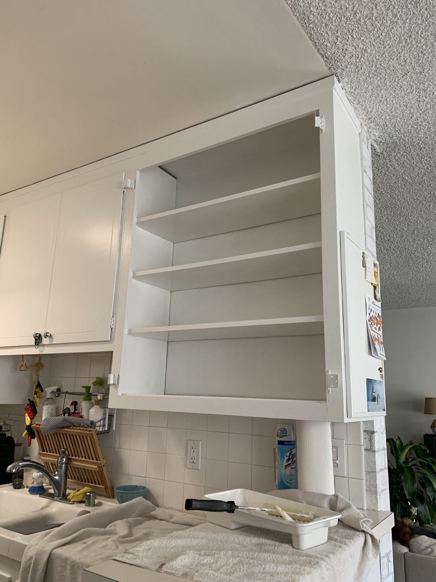 Kitchen Cabinet DIY – painted white